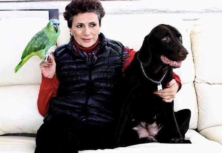 Patricia Reyes Spíndola se siente más fuerte tras vencer el cáncer. (Facebook/Patricia Reyes Spindola Uno Lleno)