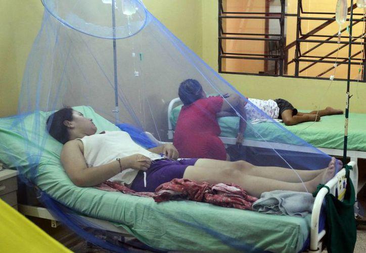 El año pasado el virus del dengue provocó costos al sistema estatal de salud de Costa Rica por unos 9.5 millones de dólares. (Archivo/EFE)