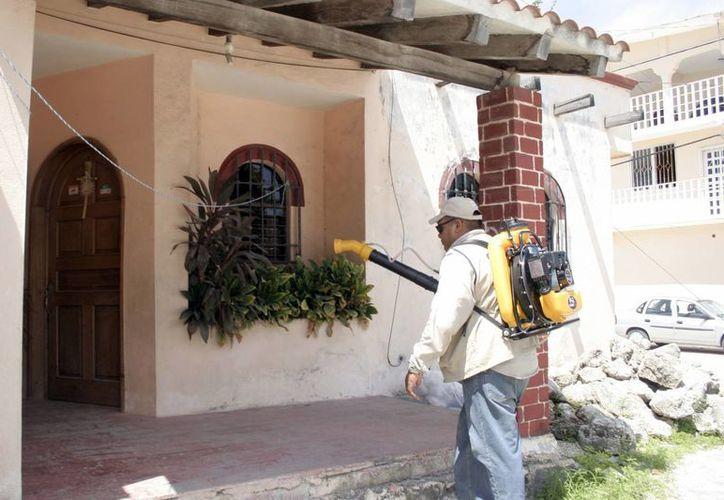Trabajadores piden los elementos completos para combatir el dengue. (Tomás Álvarez/SIPSE)