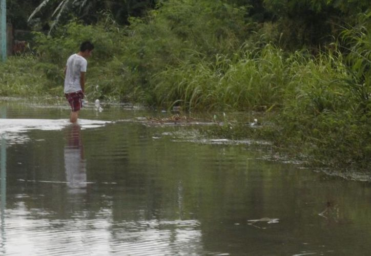 El director municipal de Salud exhortó a la población a mantener limpios sus predios. (Harold Alcocer/SIPSE)