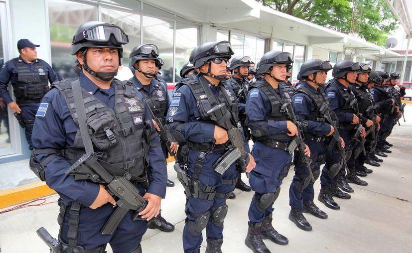 La Policía Federal abrió la convocatoria para ingresar a alguna de sus siete divisiones. (Archivo/Notimex)