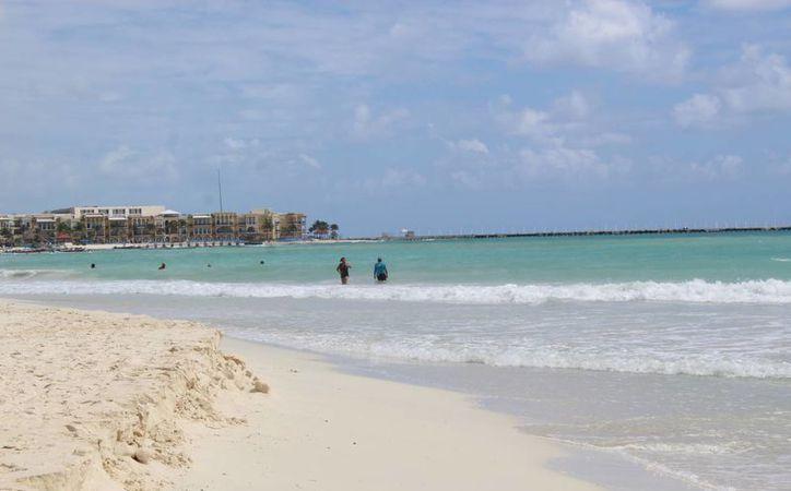 Se han dado casos en la que dichos enfermos han agredido a turistas. (Octavio Martínez/ SIPSE)