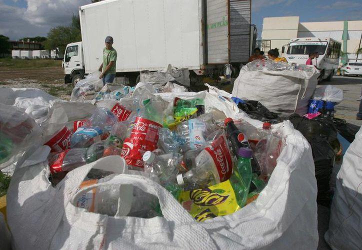 El año pasado se realizaron 12 campañas, de enero hasta noviembre, tan sólo en este último mes, se recolectaron 20 toneladas de materiales. (Israel Leal/SIPSE)