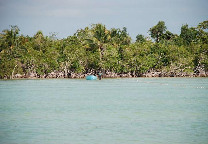 El proyecto ocupará una estructura marina de cinco mil 120 hectáreas. (Redacción/SIPSE)