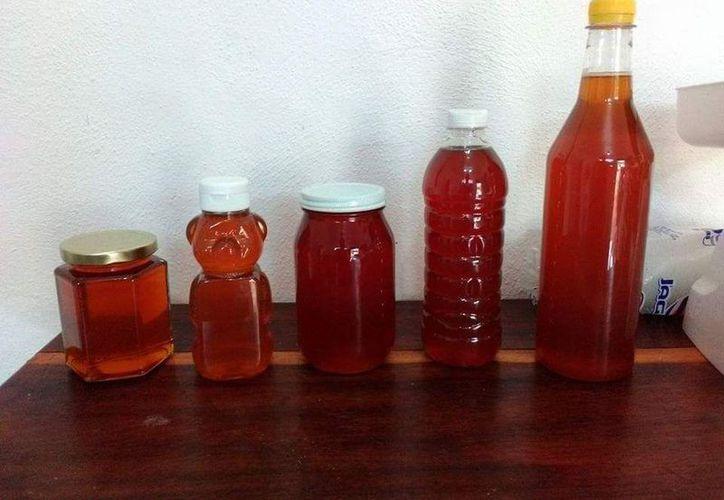 Supera Yucatán a Quintana Roo en producción de miel. (Joel Zamora/SIPSE)