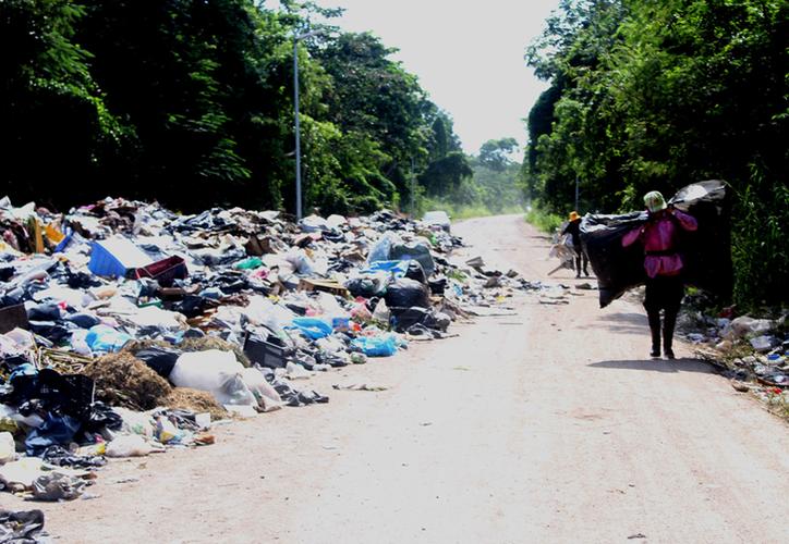 El saneamiento de la capital del Estado tomará ocho meses, informó el cabildo durante la sesión de ayer. (Archivo/SIPSE)