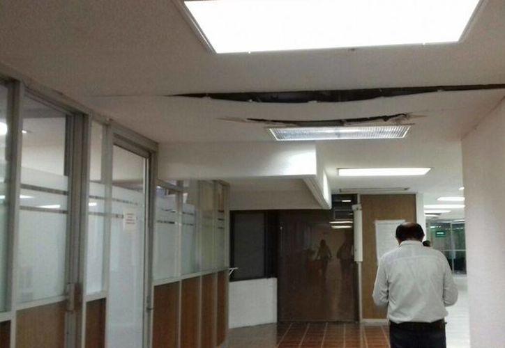 La falta de mantenimiento de los edificios representa un riesgo para la seguridad de los trabajadores y visitantes.(Paloma Wong/SIPSE)