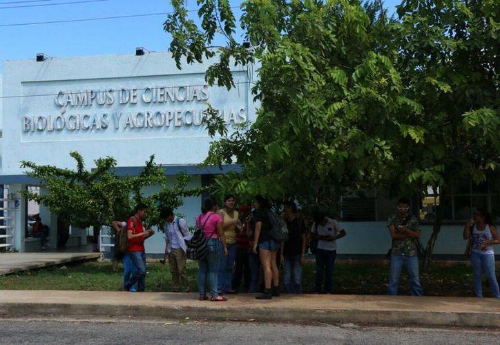 En el campus de Ciencias Biológicas de la Uady surgió un conflicto, en la lucha por por el poder estudiantil en la Facultad de Medicina Veterinaria. (José Acosta/SIPSE)