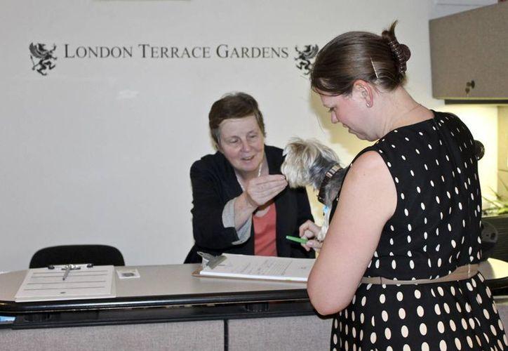 Los administradores de apartamentos alegan que cobran un depósito para cubrir posibles daños que ocasione una mascota de los inquilinos. (AP)
