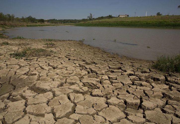 Vista de tierra agrietada en la casi vacía presa de Itaim, que abastece de agua a la zona metropolitana de Itu, en Brasil. (Agencias)