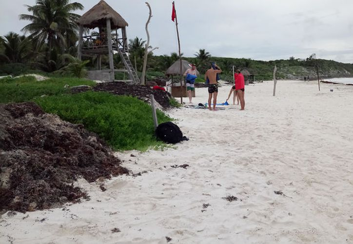 (La zona hotelera de Tulum no se evacuó y los pocos turistas que se encontraban en los hoteles permanecieron sin problemas. (Sara Cauich/SIPSE)