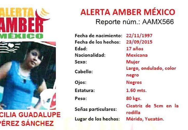 Cecilia Guadalupe Pérez Sánchez desapareció el pasado miércoles, y hasta el momento no se sabe de ella. (alertaamber.gob.mx)