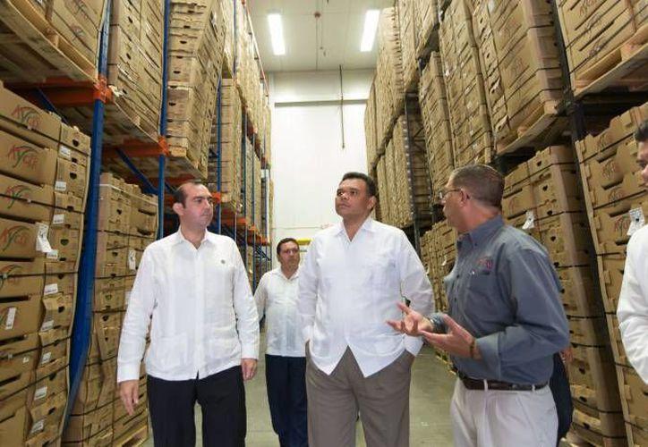 El gobernador Rolando Zapata estará este lunes en dos municipios para entregar 'caminos sacacosechas'. (SIPSE)