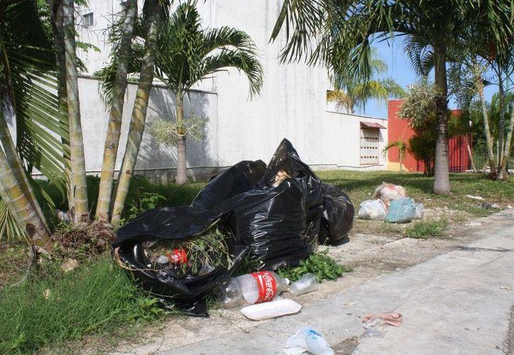 El estancamiento de basura, es la principal queja de las familias chetumaleñas. (Enrique Mena/SIPSE)