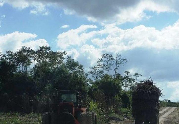 Aún existen 150 kilómetros de caminos afectados por las inundaciones de hace cuatro meses en la zona sur de Quintana Roo. (Edgardo Rodríguez/SIPSE)