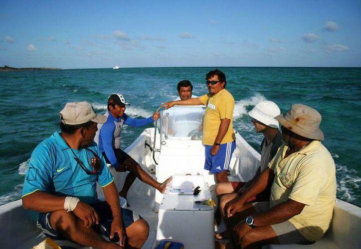 """La organización internacional Oceannus .A.C, la Conanp, y las cooperativas de producción presquera """"Andrés Quintana Roo"""", """"Langosteros del Caribe"""" y """"Banco Chinchorro"""" auspician    este proyecto. (Redacción/SIPSE)"""