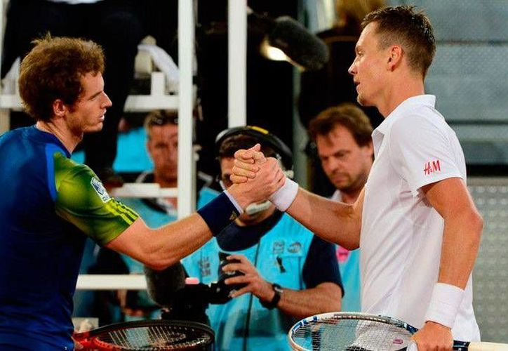 Andy Murray (i) eliminó a Berdych para jugar la final del Abierto de Catar. (latribuna.hn)