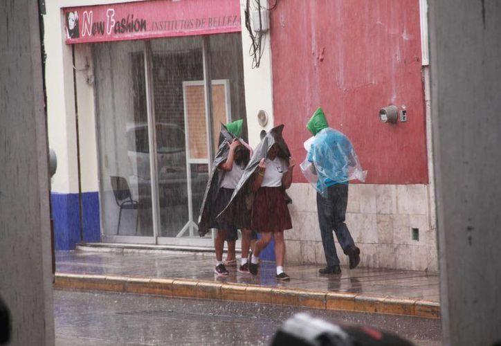 """El Servicio Meteorológico Nacional, señaló que mientras la Tormenta Tropical """"Colin"""" avanza en el Golfo de México, en Yucatán prevalecería el intenso calor con lluvias sobre todo vespertinas. (Jorge Acosta/Milenio Novedades)"""