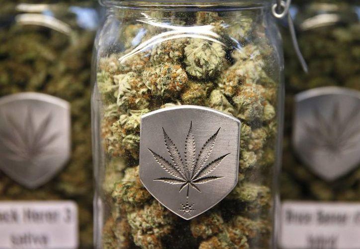 Narro dijo que el tratar de hacer una regulación para el caso de la marihuana dará experiencia al país. (Archivo/Agencias)
