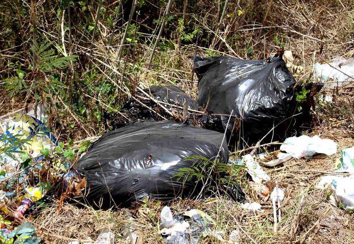 En un recorrido se constató un basurero clandestino sobre la vía federal que conduce a Valladolid, Yucatán.
