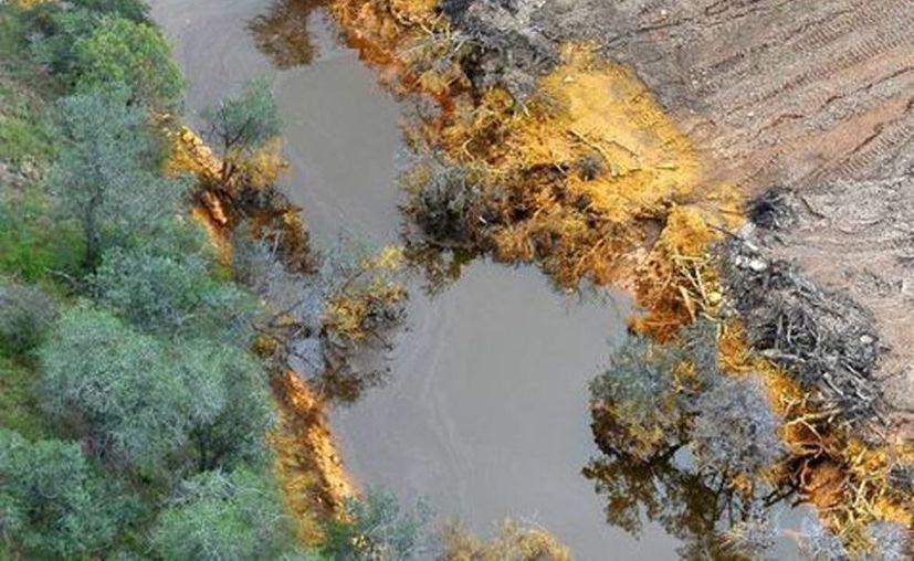 Autoridades locales recomiendan a los lugareños a no acercarse ni tener contacto con el agua, así como retirar el ganado como medida preventiva. (Milenio)