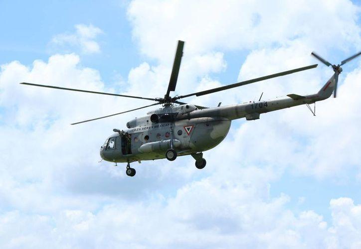 La FMA también está dedicada a la detección y destrucción de pistas clandestinas en territorio yucateco. (Archivo/ Milenio Novedades)