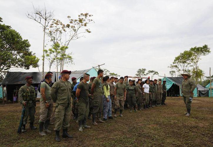 Imagen de las Fuerzas Armadas Revolucionarias de Colombia, FARC en su campamento en La Carmelita, cerca de Puerto Asis, en el suroeste de Putumayo. El 1 de marzo fue el plazo para que las FARC entregaran el 30 por ciento de sus armas. Pero los retrasos logísticos que establecen los campamentos rurales donde se reúnen los rebeldes han frenado el proceso. (Foto AP / Fernando Vergara)