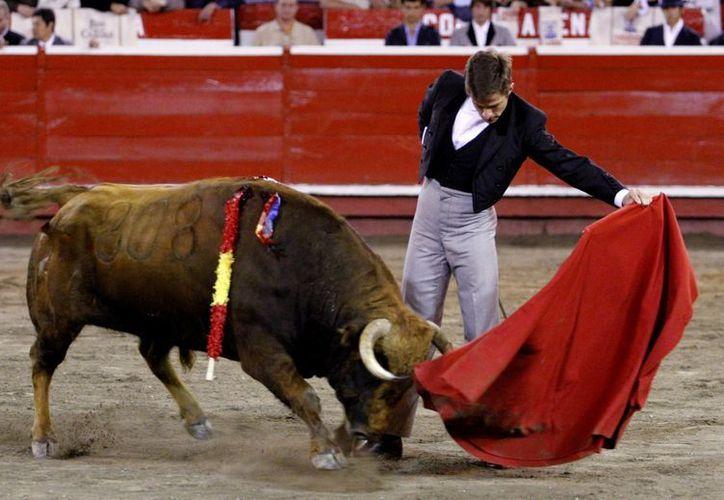 El torero español Julián López 'El Juli'. (EFE/Archivo)
