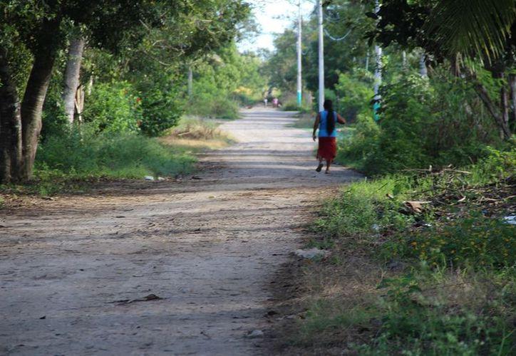 Debido a la marginación que sufren, poco a poco las comunidades rurales de la Ribera del Río Hondo se van quedando sin habitantes. (Carlos Castillo/SIPSE)