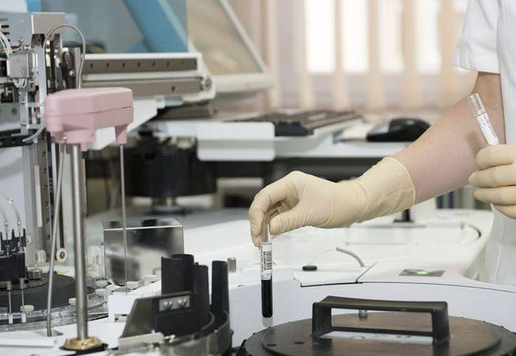 Actualmente la bacteria 'Mycoplasma genitalium' solo está presente en el 1 % o el 2 % de la población de Reino Unido, (RT)