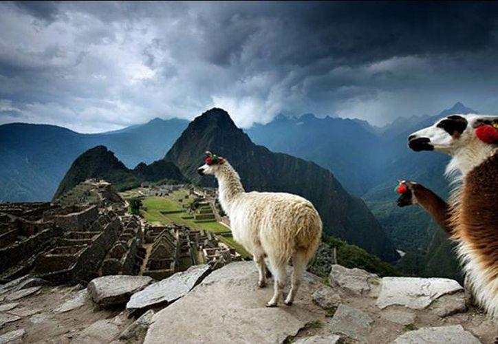 La exposición se divide en varias categorías. (National Geographic).