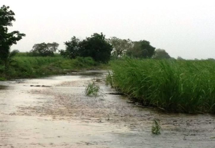 La mayor afectación de la zona se refleja en los caminos sacacosecha, que han presentado varios hundimientos y reblandecimientos. (Edgardo Rodríguez/SIPSE)