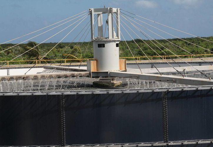 Nuevo complejo recepciona de 225 litros de aguas negras por segundo y una descarga 80%. (Julián Miranda/SIPSE)