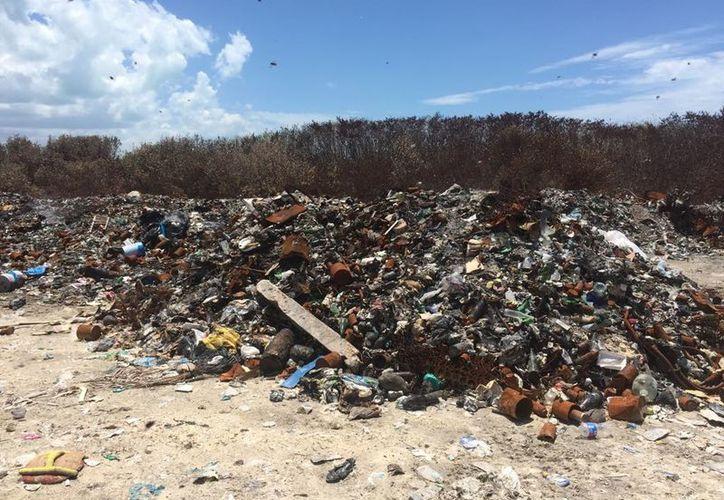 El basurero sufrió un incendio en semanas pasadas. (Stephani Blanco/SIPSE)