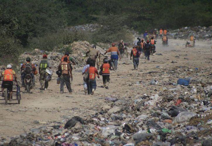 Aseguran que el basurero no puede ser concesionado a una nueva empresa. (Harold Alcocer/SIPSE)