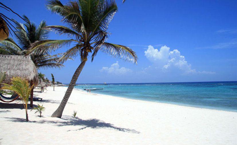 Si quieres vivir una experiencia única de contacto con la naturaleza visita las mejores playas 'más económicas' de México. (Contexto)