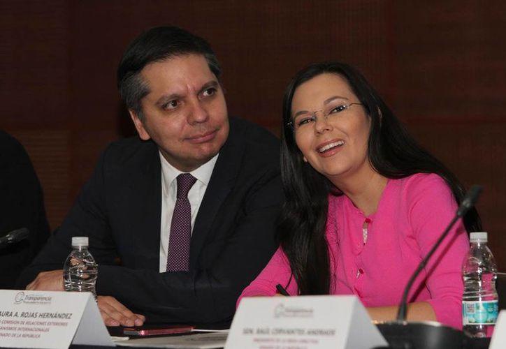 Eduardo Bohórquez, director ejecutivo de Transparencia Mexicana, dijo que miles de ciudadanos evaluarán el compromiso real de cada uno de los integrantes del Senado y la Cámara de Diputados frente al desafío de la corrupción y la impunidad. (Notimex/archivo)