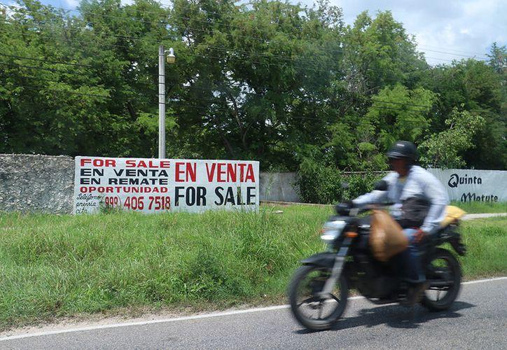 Ucú se perfila como una zona cercana a Mérida ideal para la inversión. (Milenio Novedades)