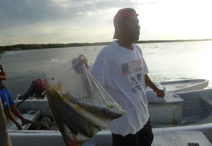Los pescadores registran pérdidas debido a que la captura es poca. (Raúl Balam/SIPSE)