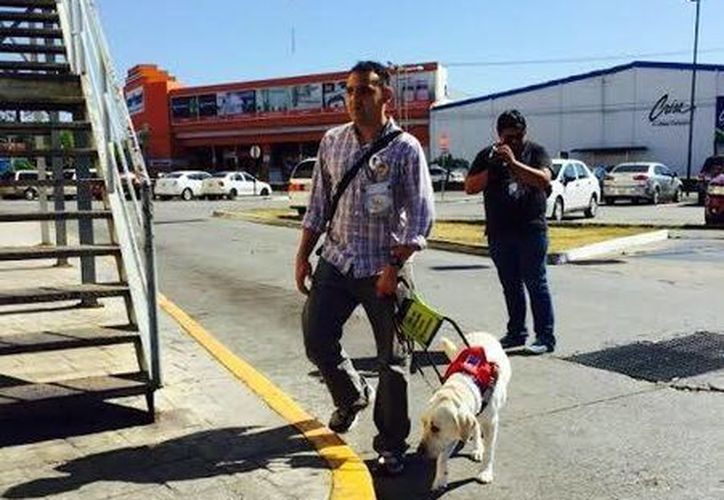 José Iván Caballero Casares dice que el no dejarle entrar con su perro guía es como pedirle a un paralitico que deje su silla de ruedas afuera de un negocio. (SIPSE)