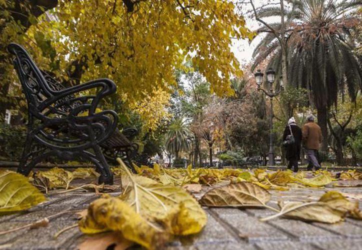 Esta noche inicia el otoño en el hemisferio norte.  (Internet)