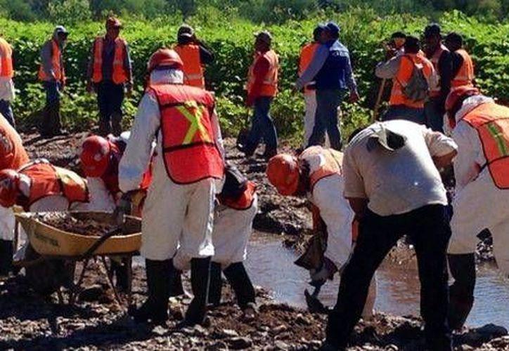 Grupo México asegura que el derrame fue notificado a las autoridades de manera oportuna. (Milenio)