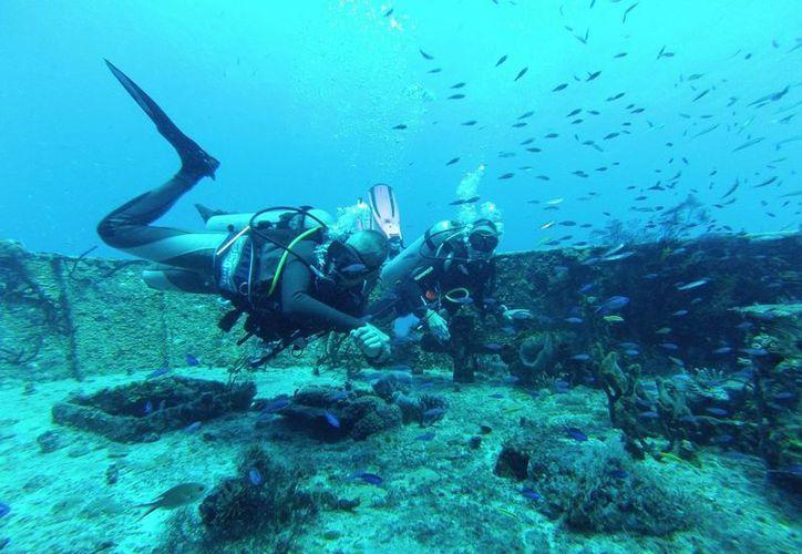 Con la creación del Área Natural Protegida (ANP) para el Caribe mexicano podría fortalecerse la Conanp. (Adrián Barreto/SIPSE)