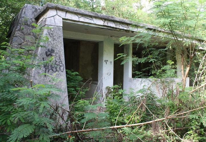 En el antiguo camino hacia Subteniente López se ubican edificios abandonados invadidos por la maleza. (Juan Palma/SIPSE)