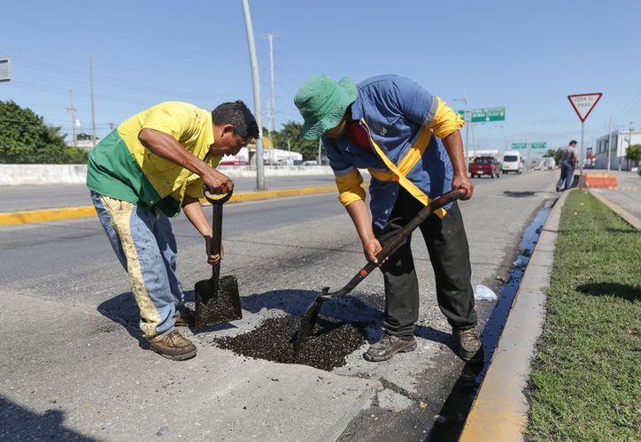 Las actividades de mantenimiento se llevan a cabo en calles y avenidas de Playa del Carmen.  (Foto: Redacción)