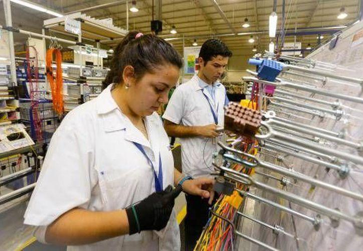 (Imagen ilustrativa tomada de www.hoy.com.py)