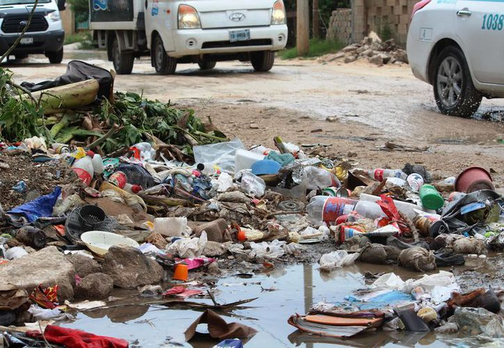 Se estima que actualmente hay alrededor cinco mil personas viviendo de manera irregular en la zona. (Foto: Octavio Mrtínez/SIPSE).