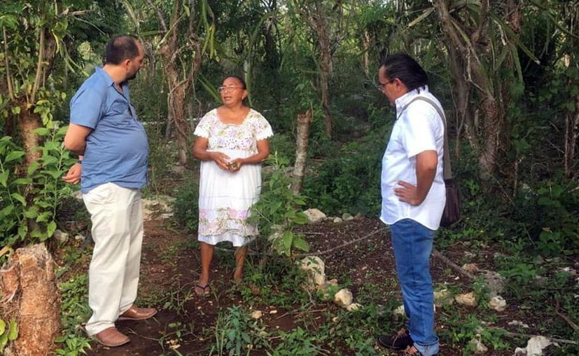 Desarrolla el CICY estrategias de mejoramiento. (Novedades Yucatán)