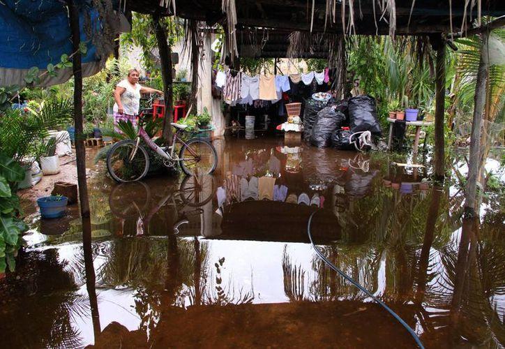 En las casas ubicadas cerca de la ciénaga o en las partes bajas el agua invadió los patios. (José Acosta/SIPSE)