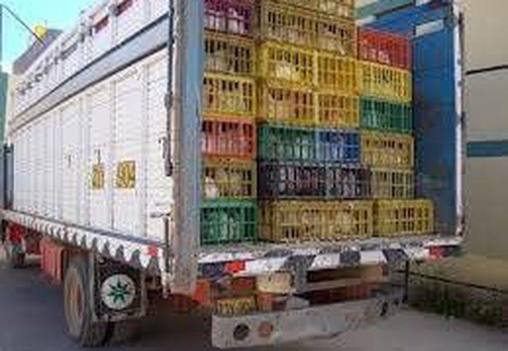 Reportaron el ingreso de un camión de gallinas provenientes de Belice y cuyo destino aparentemente era Yucatán. (Contexto/Internet)